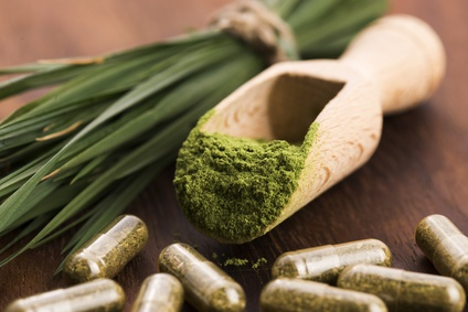 Chlorella: Kleine Alge – große Wirkung