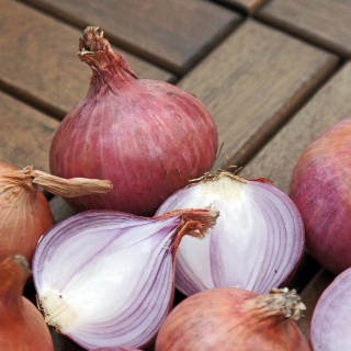 Hände schützen beim Zwiebeln und Gemüseschneiden