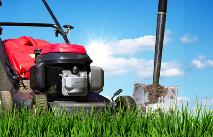Moos langfristig aus dem Rasen entfernen