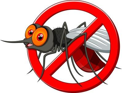 Natürlicher Insektenschutz: Diese Hausmittel helfen wirklich