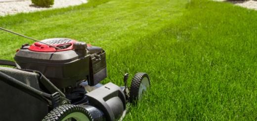 Ölwechsel beim Rasenmäher selbst machen