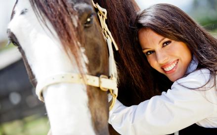 Pferde vor Bremsen, Mücken und Fliegen schützen