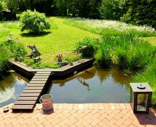 Solar-Teichpumpe für den Gartenteich - worauf kommt es an?