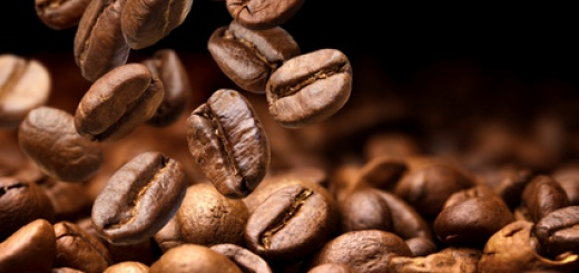 Unterschied der Kaffeesorten Arabica und Robusta