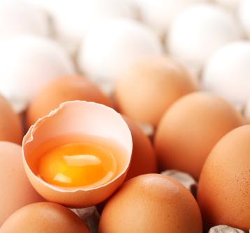 Wie lange sind Hühnereier / Eier haltbar?
